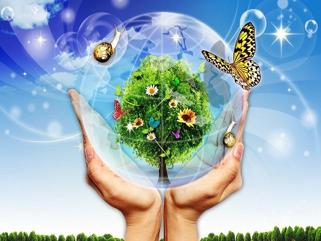 Проект «От экологии природы к экологии души»