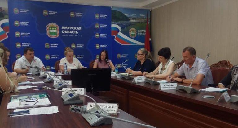 Заседание регионального организационного комитета по проведению в Амурской области Года добровольца (волонтера)