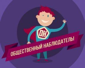 Общественная палата Амурской области объявляет набор общественных наблюдателей за голосованием о поправках в Конституцию