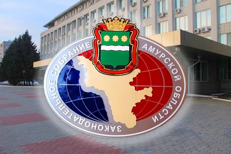 Прием предложений по доформированию Общественной палаты Амурской области вновь продлен