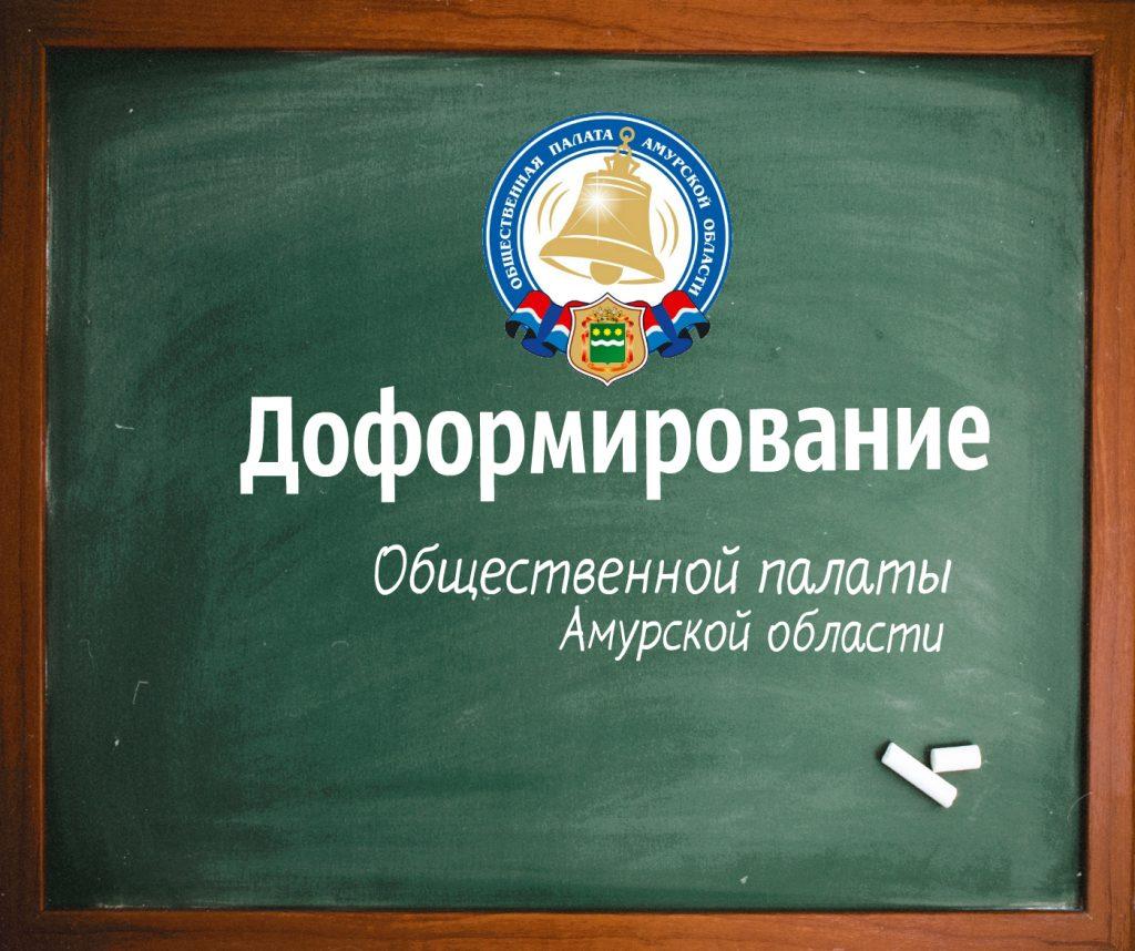 О доформировании Общественной палаты Амурской области