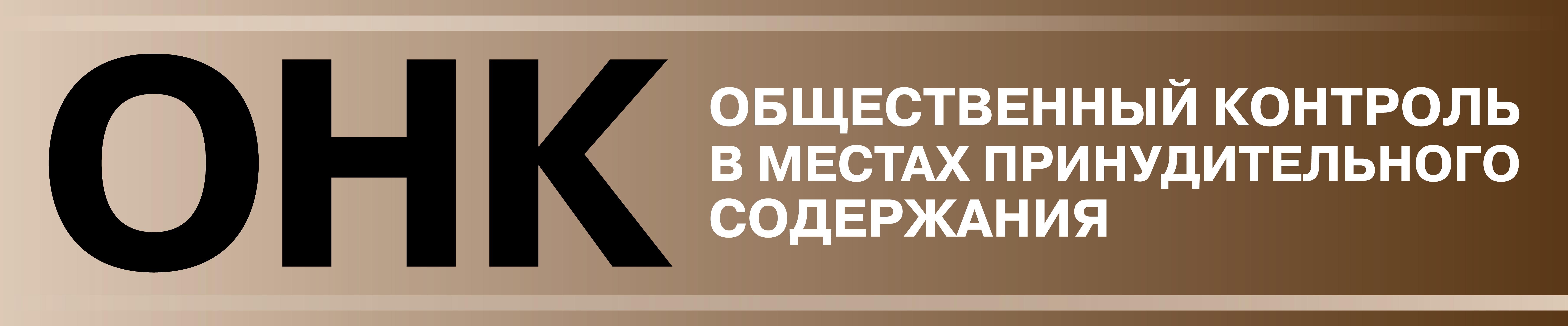 О начале процедуры дополнения состава ОНК в Амурской области