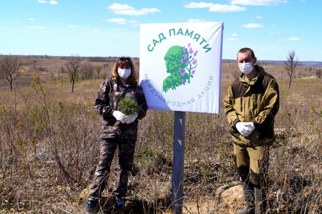 Амурские лесничества и лесхозы принимают участие в акции «Сад Памяти»