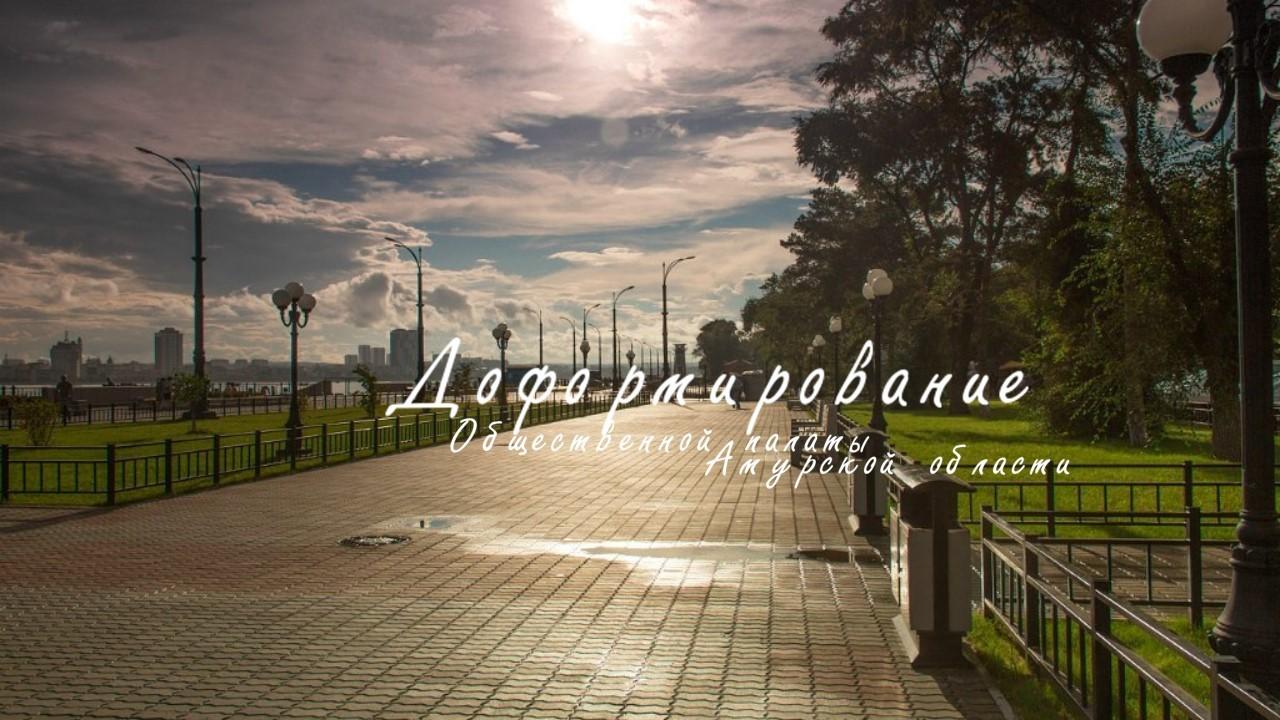 Доформирование Общественной палаты Амурской области