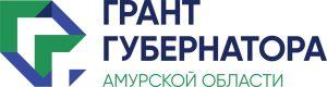 Победители первого грантового конкурса губернатора Амурской области разбирались в тонкостях подготовки отчетов по проектам